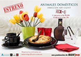 Animales-domésticos-Xirgu-baja-1 (1)