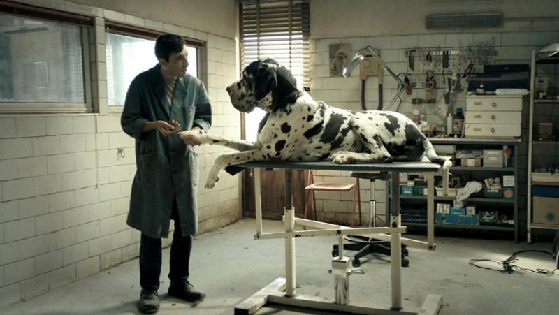 """""""Dogman"""". Miércoles 20 y jueves 21 de marzo, 18:30 y 21:00 h. Teatro Salón Cervantes."""