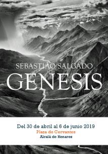 cartel_genesis_salgado_carrusel