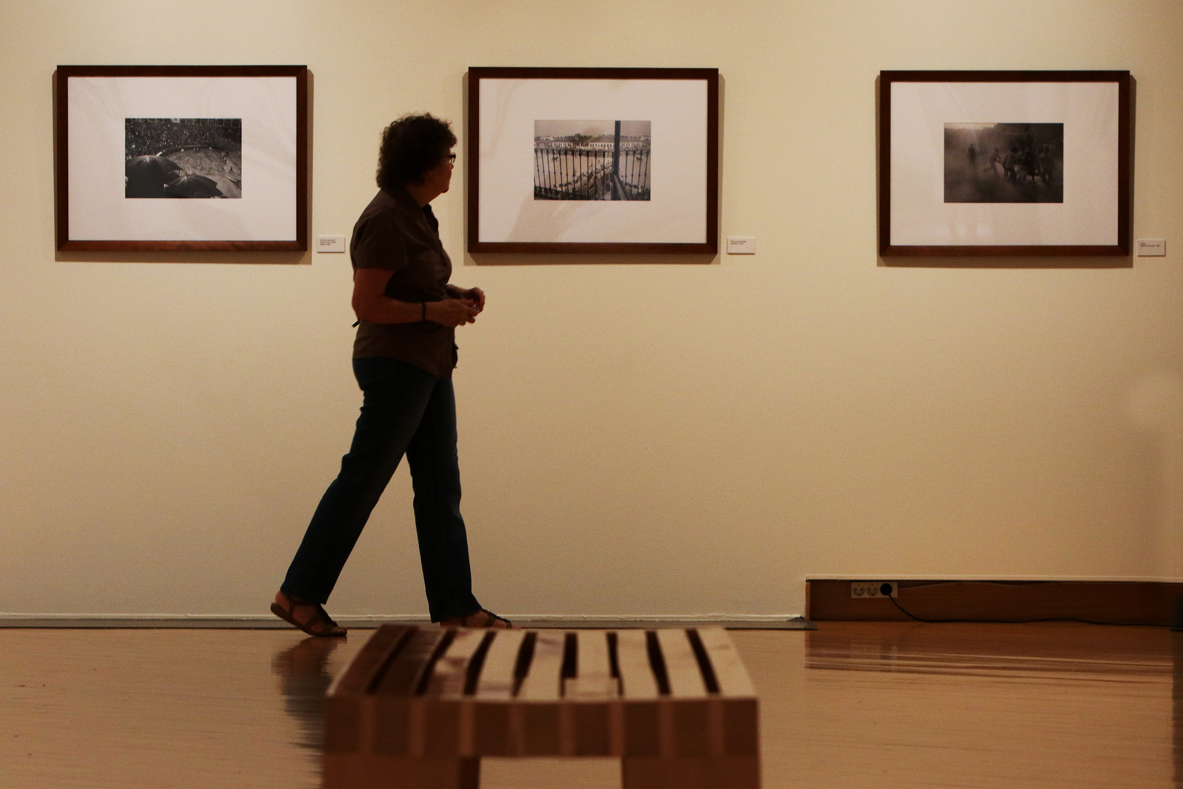 Exposición_Bos_Taurus_4