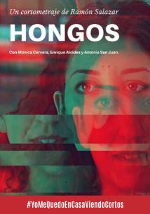 corto_delDia_hongos